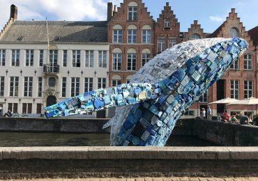 Triennale di Bruges, Bruges, Triennale, Studiokca, Skyscraper (the Bruges Whale), Fiandre, Visit Flanders, Brugge, Bruges, Turismo Fiandre, Triennale Bruges